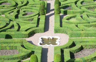 hedge garden